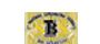 logo_sbs-pro-secure